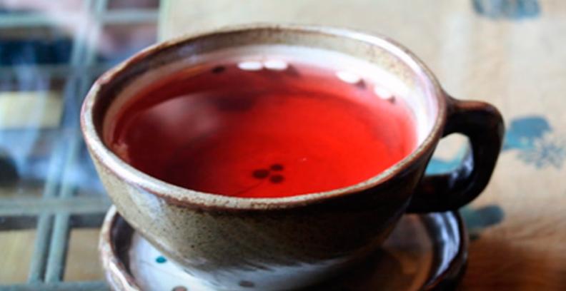 té de Rooibos